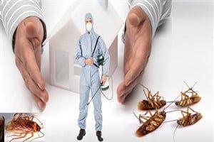 böcek ilaçlama avcılar merkez