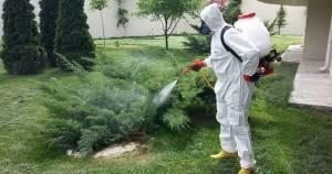 böcek ilaçlama bahçelievler