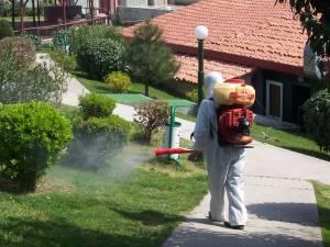 başakşehir böcek ilaçlama